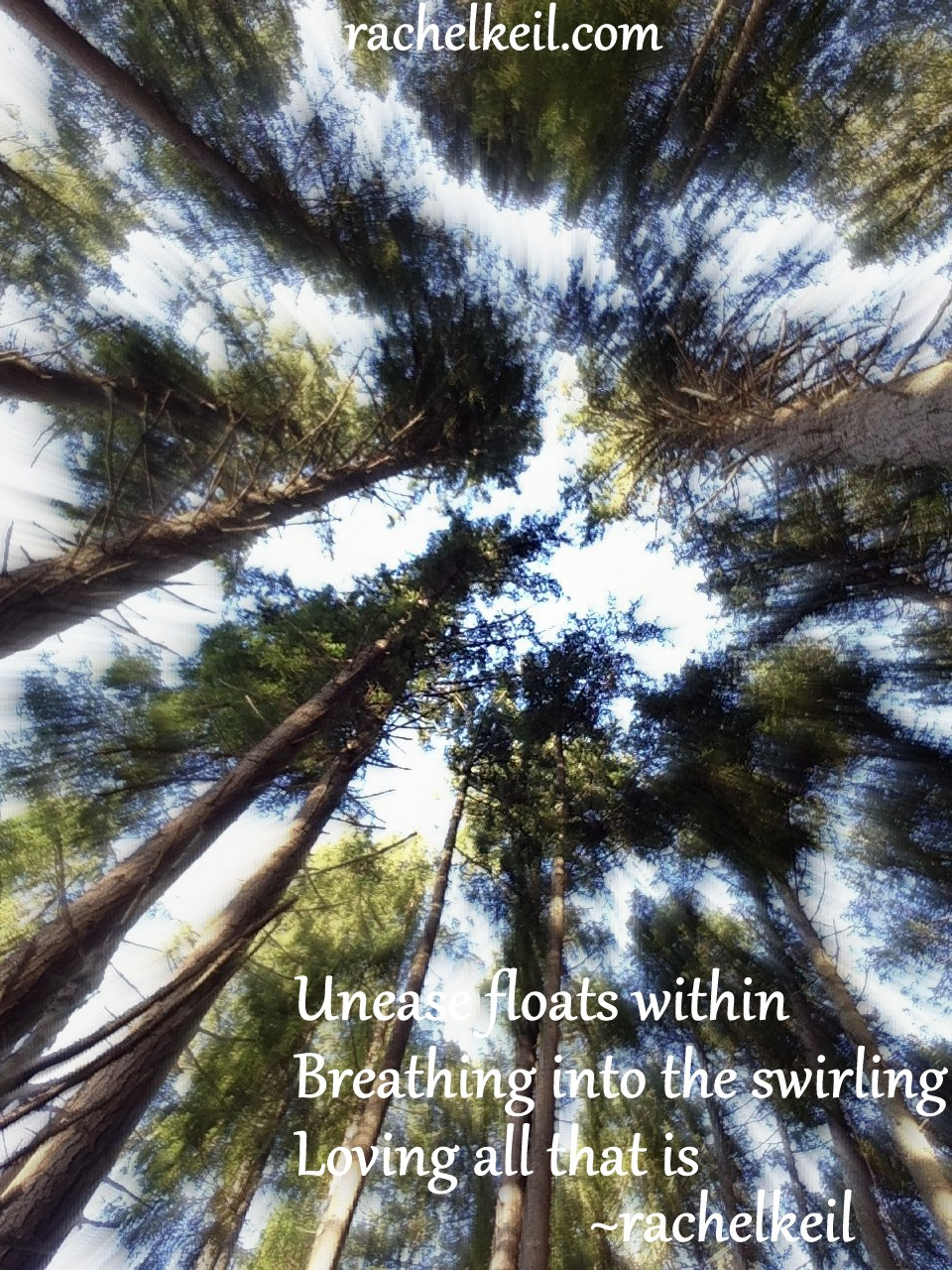 Loving all that is-Haiku Blog