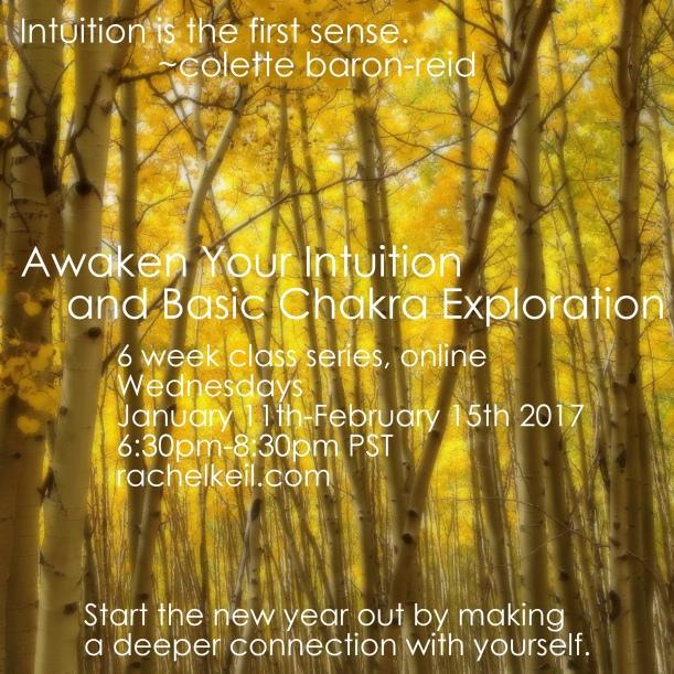 Aspen Intuition Class 2017