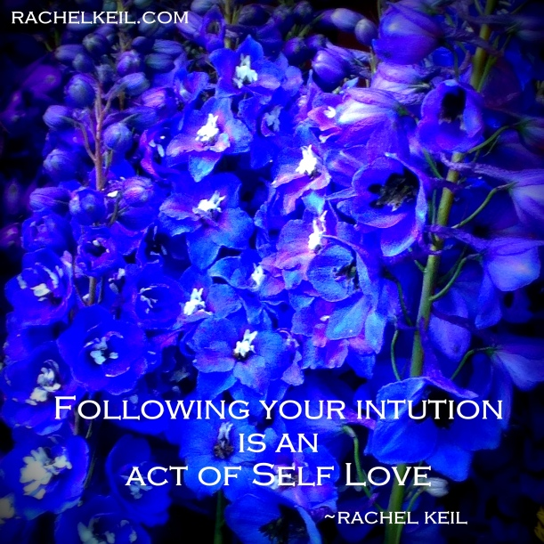 Delphinium Intuition is an act of Self Love-Blog-