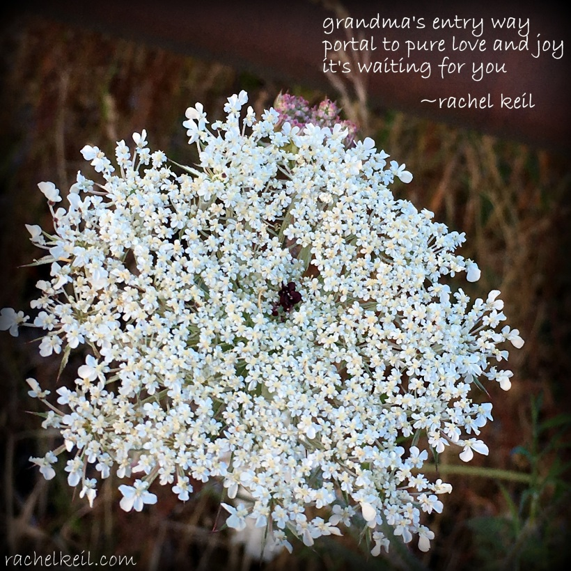 Queen Anne's Lace-Blog-Haiku